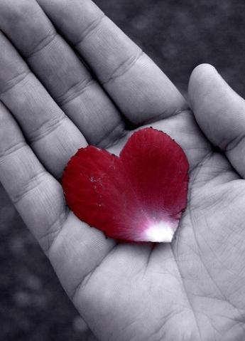 hand-with-heart-D-Sharon-Pruitt